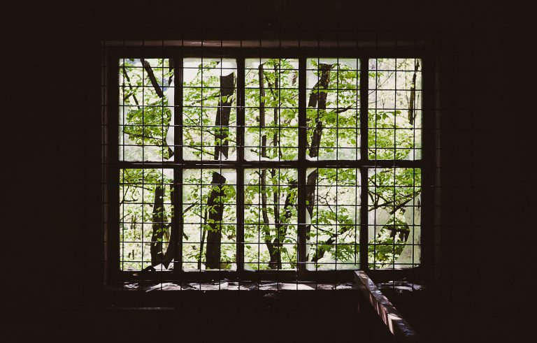 window with tree view